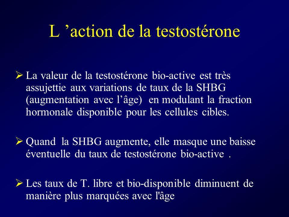 L action de la testostérone La valeur de la testostérone bio-active est très assujettie aux variations de taux de la SHBG (augmentation avec lâge) en