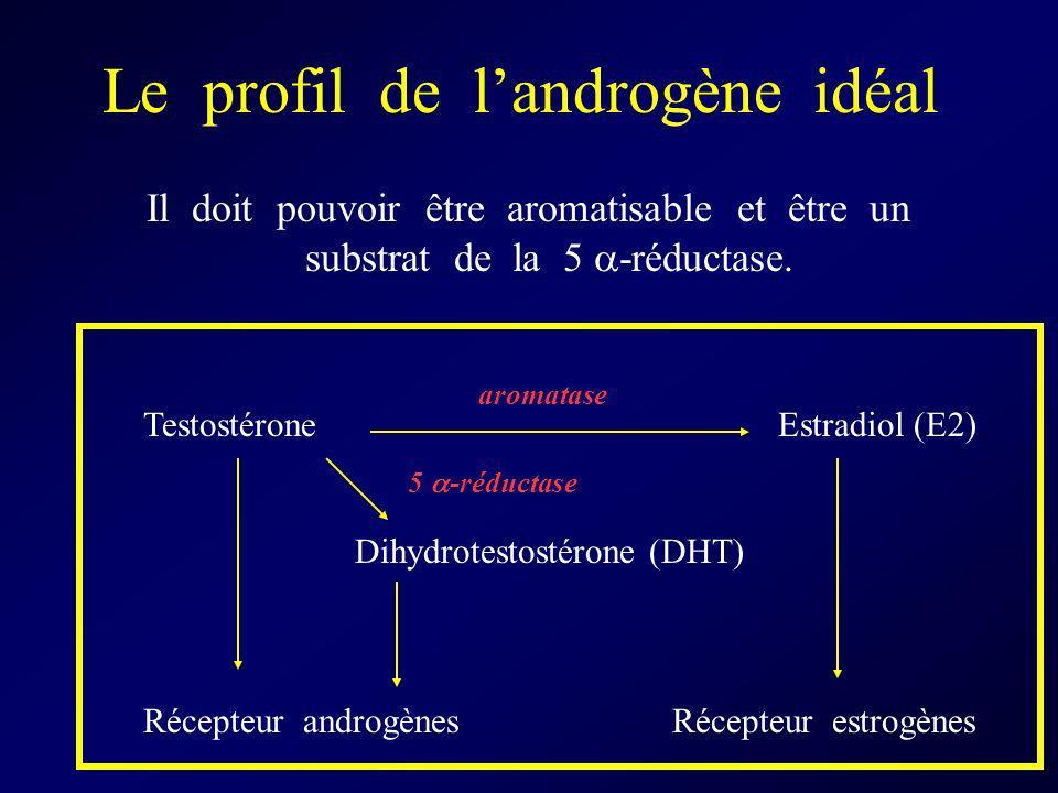 Le profil de landrogène idéal Il doit pouvoir être aromatisable et être un substrat de la 5 -réductase. Testostérone Estradiol (E2) Dihydrotestostéron