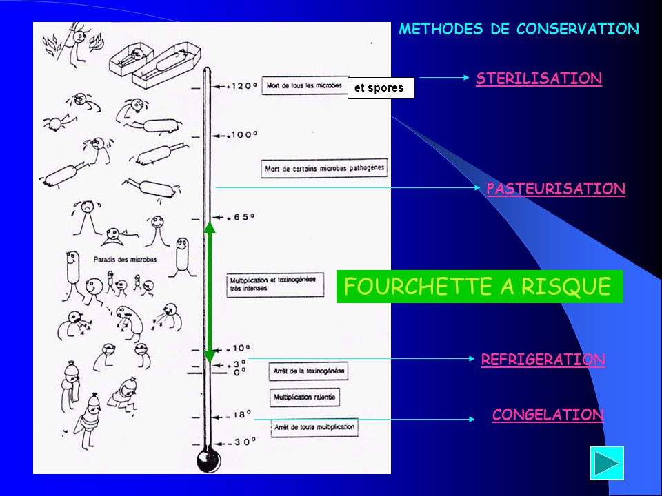 et spores STERILISATION PASTEURISATION REFRIGERATION CONGELATION METHODES DE CONSERVATION FOURCHETTE A RISQUE
