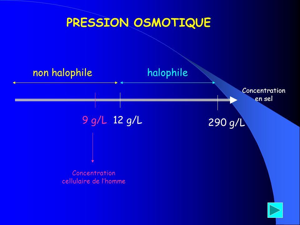 Concentration en sel 9 g/L 290 g/L 12 g/L Concentration cellulaire de lhomme PRESSION OSMOTIQUE non halophilehalophile