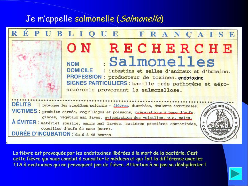 Je mappelle salmonelle (Salmonella) endotoxine La fièvre est provoquée par les endotoxines libérées à la mort de la bactérie. Cest cette fièvre qui no