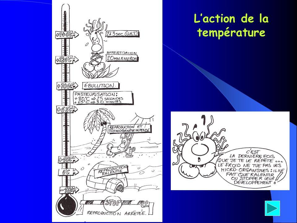 Laction de la température