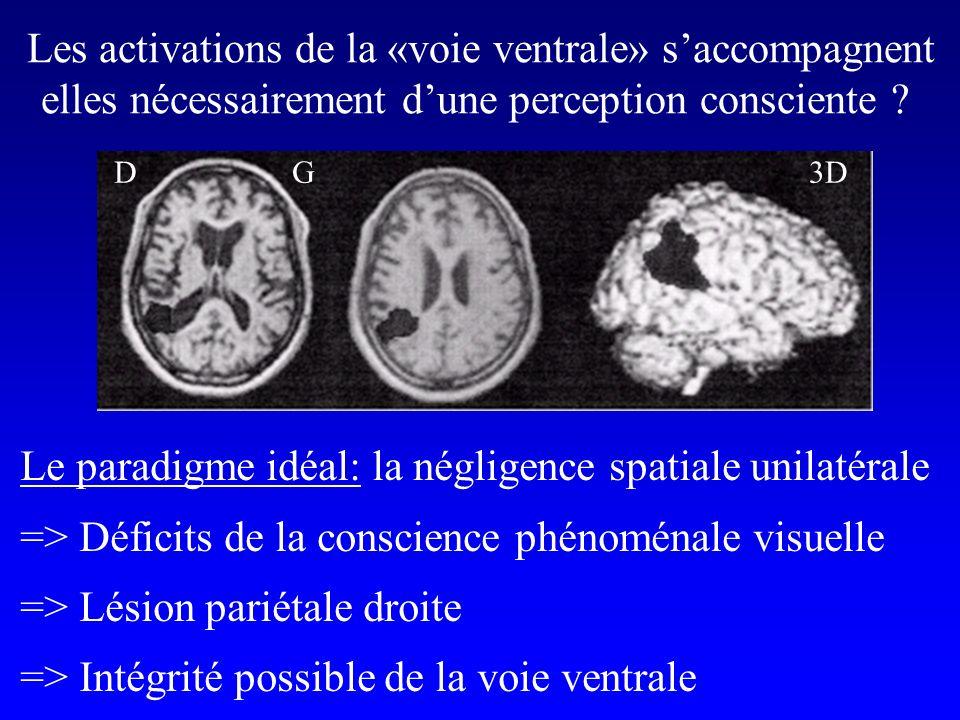 DG3D Les activations de la «voie ventrale» saccompagnent elles nécessairement dune perception consciente .