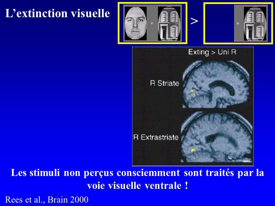 + Les stimuli non perçus consciemment sont traités par la voie visuelle ventrale .
