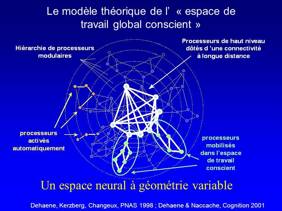 Un espace neural à géométrie variable Dehaene, Kerzberg, Changeux, PNAS 1998 ; Dehaene & Naccache, Cognition 2001 Le modèle théorique de l « espace de travail global conscient »
