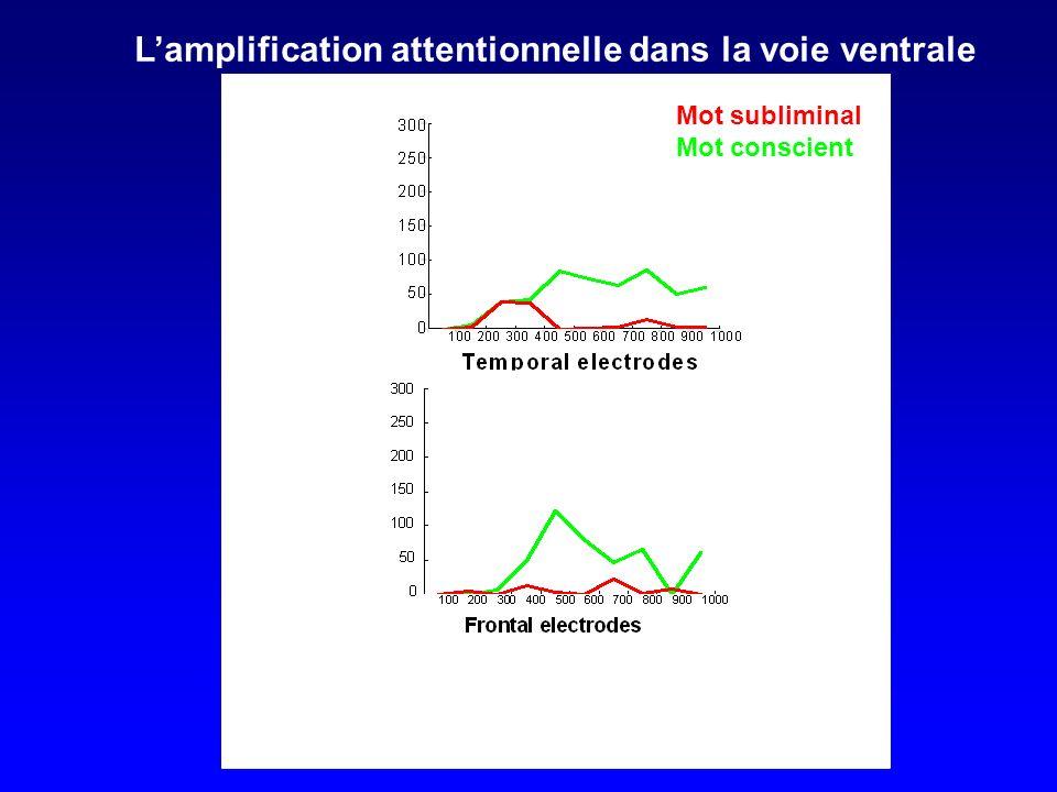 Lamplification attentionnelle dans la voie ventrale Mot subliminal Mot conscient