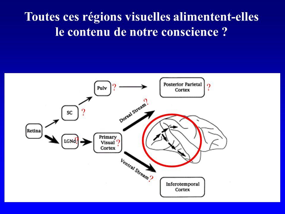 Toutes ces régions visuelles alimentent-elles le contenu de notre conscience ? ? ? ? ? ? ??