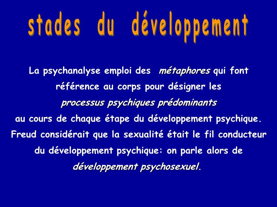 métaphores La psychanalyse emploi des métaphores qui font référence au corps pour désigner les processus psychiques prédominants au cours de chaque ét