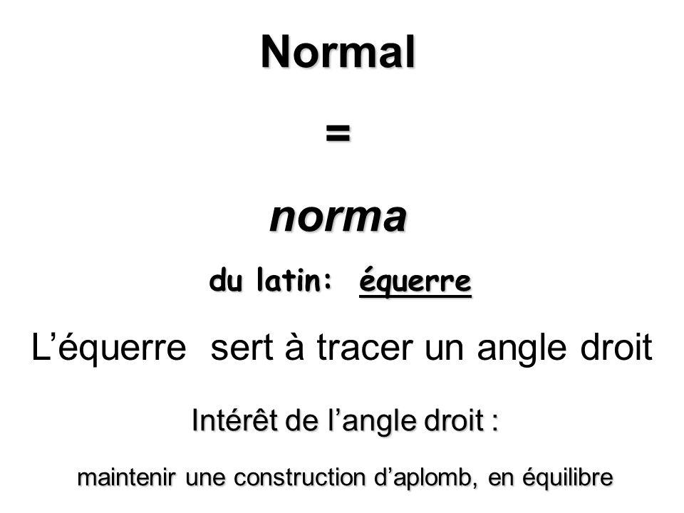 le normal _______________________________