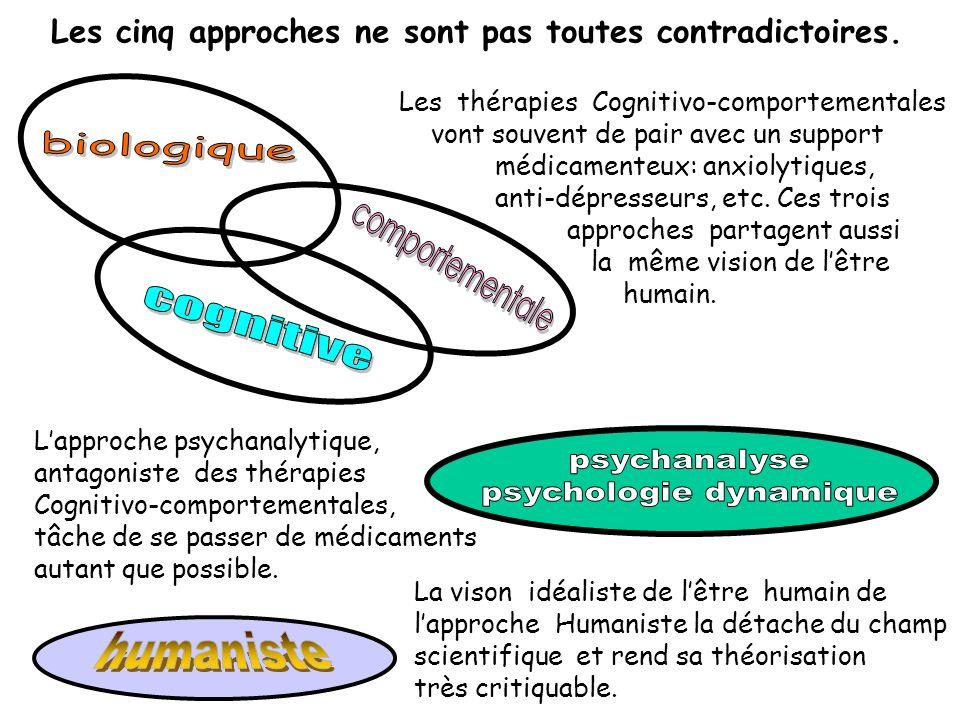 Les cinq approches ne sont pas toutes contradictoires. Les thérapies Cognitivo-comportementales vont souvent de pair avec un support médicamenteux: an