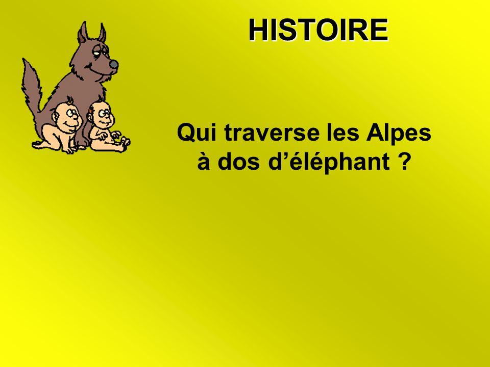 HISTOIRE Qui traverse les Alpes à dos déléphant