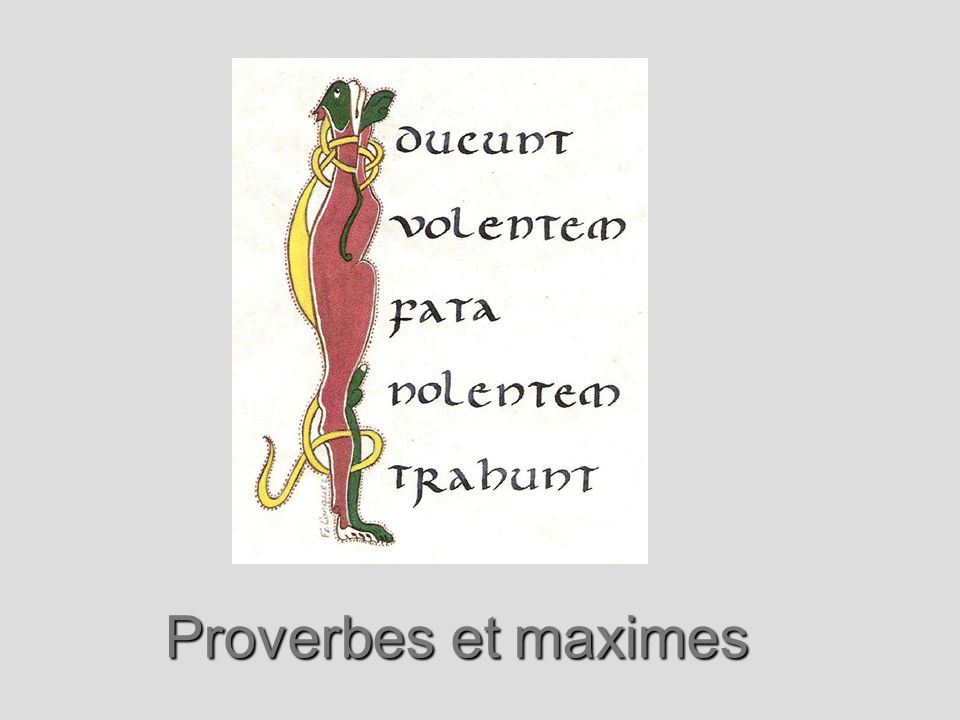 Proverbes et maximes
