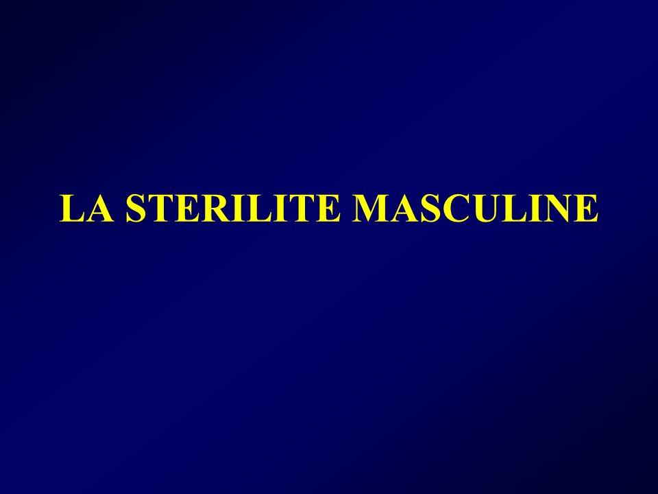 LA STERILITE MASCULINE