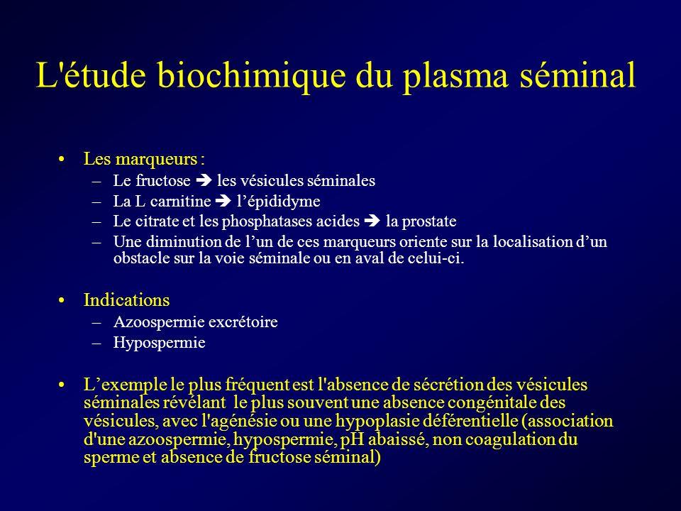 L'étude biochimique du plasma séminal Les marqueurs : –Le fructose les vésicules séminales –La L carnitine lépididyme –Le citrate et les phosphatases