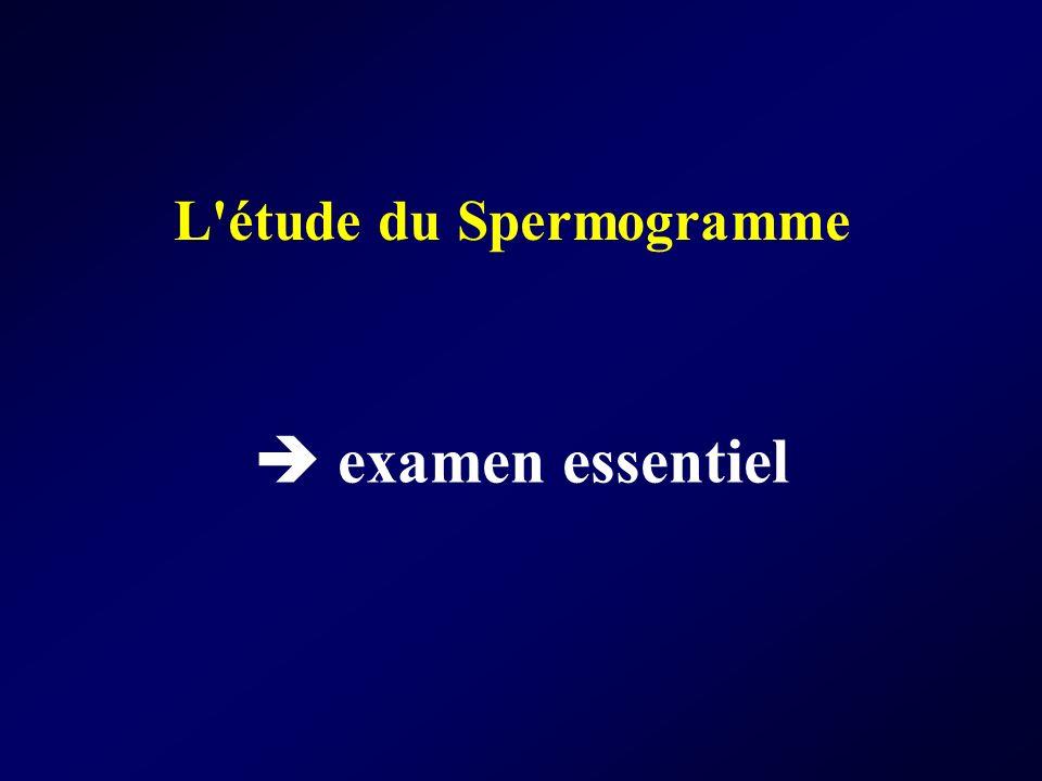 L'étude du Spermogramme examen essentiel