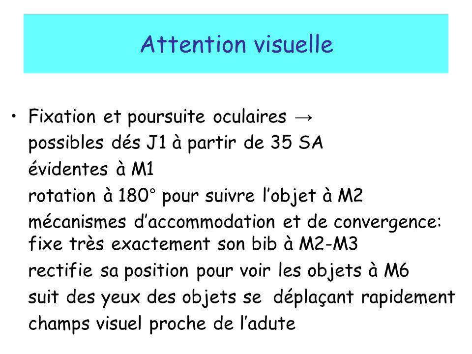 Attention visuelle Fixation et poursuite oculaires possibles dés J1 à partir de 35 SA évidentes à M1 rotation à 180° pour suivre lobjet à M2 mécanisme