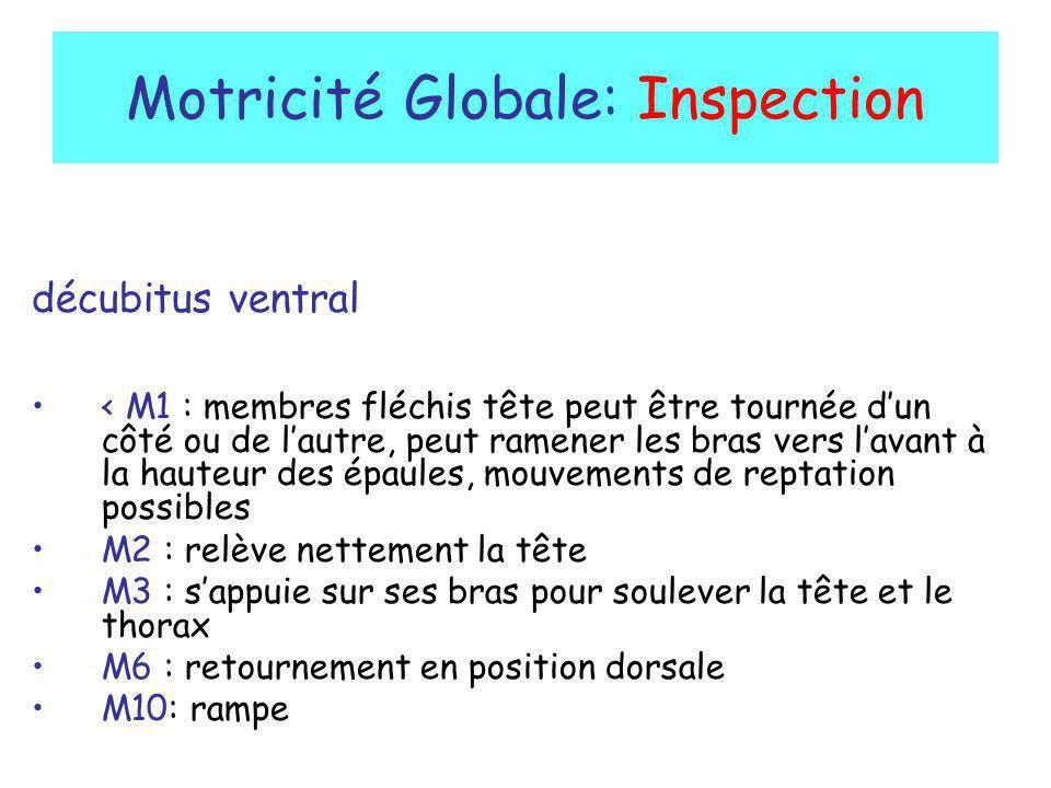 Motricité Globale: Inspection décubitus ventral < M1 : membres fléchis tête peut être tournée dun côté ou de lautre, peut ramener les bras vers lavant