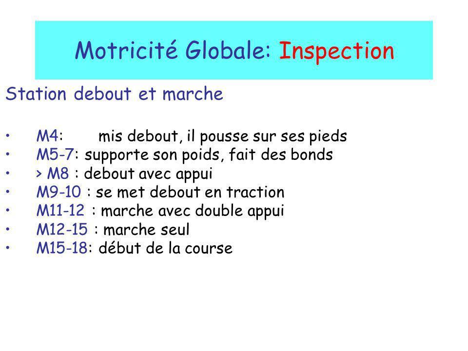 Motricité Globale: Inspection Station debout et marche M4: mis debout, il pousse sur ses pieds M5-7: supporte son poids, fait des bonds > M8 : debout