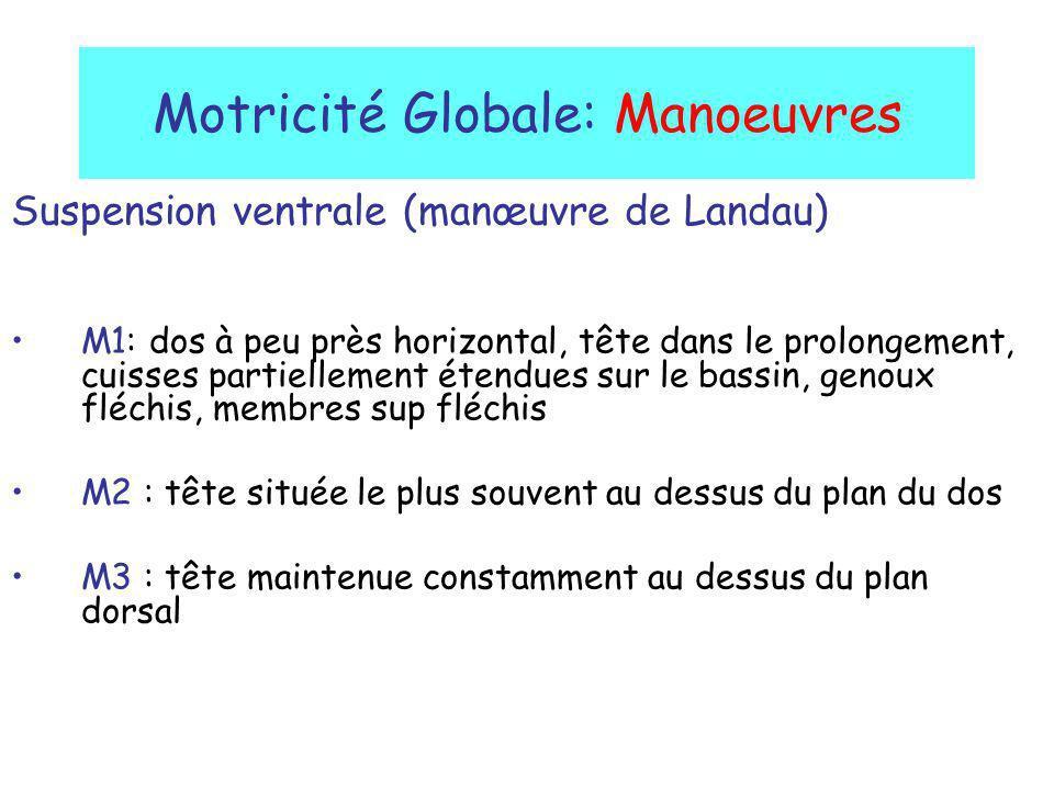 Motricité Globale: Manoeuvres Suspension ventrale (manœuvre de Landau) M1: dos à peu près horizontal, tête dans le prolongement, cuisses partiellement
