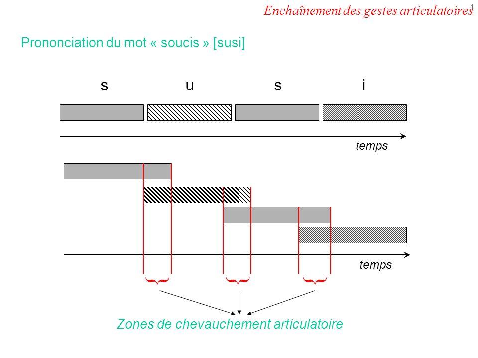 3 La production des sons du langage suppose la mise en place de gestes articulatoires (arrondissement des lèvres, abaissement de la langue, etc). La r