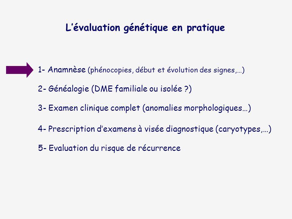 Lévaluation génétique en pratique 1- Anamnèse (phénocopies, début et évolution des signes,…) 2- Généalogie (DME familiale ou isolée ?) 3- Examen clini