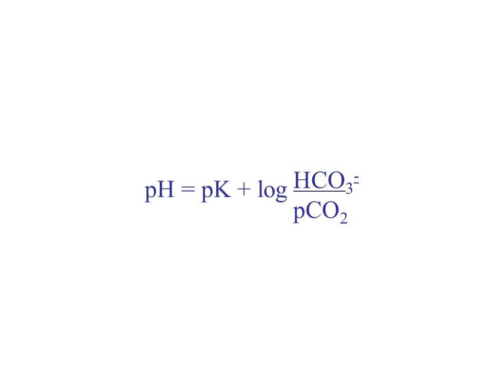 Diagnostic dune acidose métabolique avec TA augmenté (> 16) Variété Acidose lactique Acidocétose Insuffisance rénale Intoxication Anion indosé Lactate -hydroxy-butyrate Sulfates, phosphates, hippurates Cétones & lactates Glycolate, glyoxylate, oxalate Formate Cause Hypoperfusion systémique Lyse cellulaire (infarctus mésentérique, lymphome) Insuffisance hépato-cellulaire Biguanide Diabète Alcool Jeûn Défaut dexcrétion Aspirine Ethylène glycol Méthanol