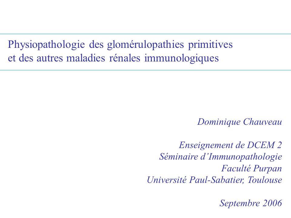 Physiopathologie des glomérulopathies primitives et des autres maladies rénales immunologiques Dominique Chauveau Enseignement de DCEM 2 Séminaire dIm
