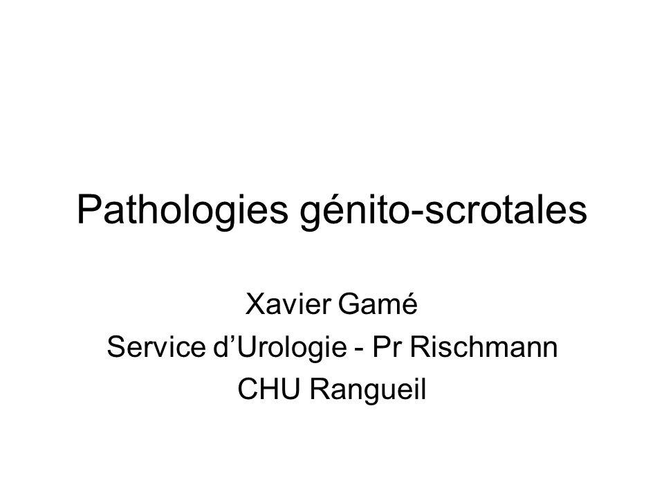Pathologies génito-scrotales Xavier Gamé Service dUrologie - Pr Rischmann CHU Rangueil