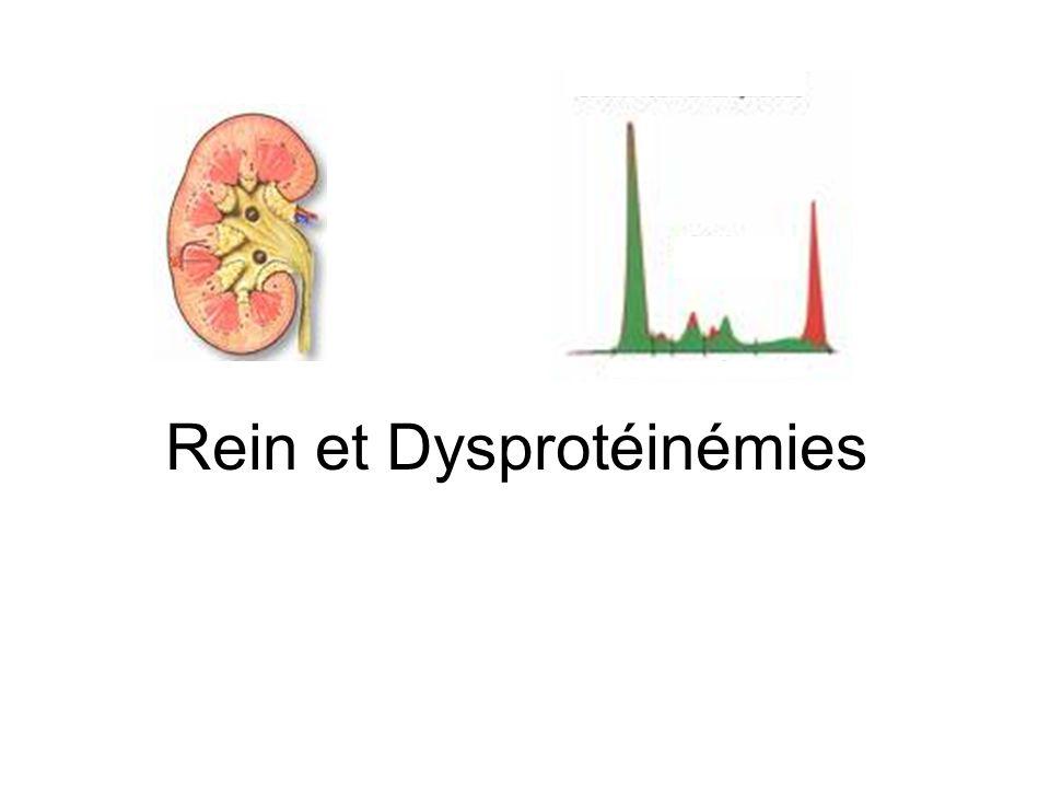 Dysprotéinémies = Dysglobulinémies Prolifération dun clone de cellules productrices dImmunoglobulines –Excès dIg monoclonale ou de lun de ses fragments (ch.