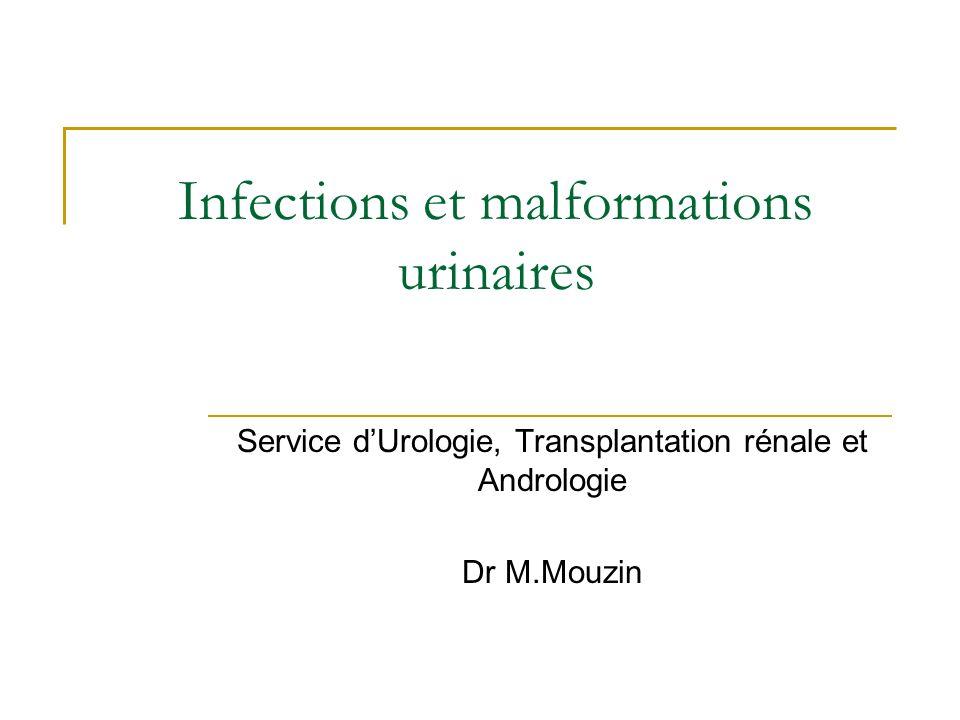 Infections et malformations urinaires Service dUrologie, Transplantation rénale et Andrologie Dr M.Mouzin