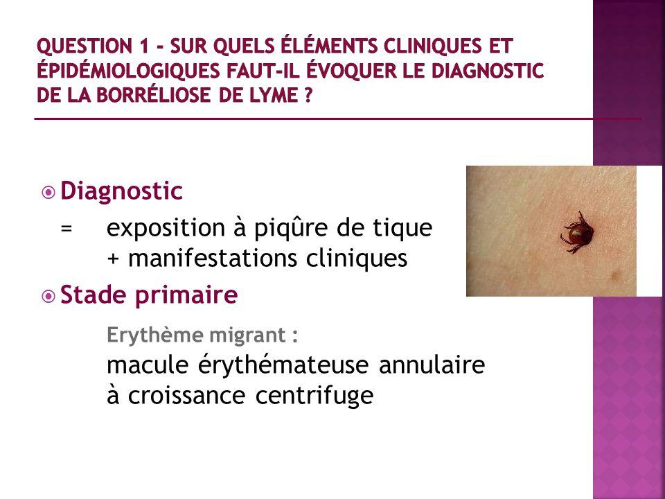 Diagnostic = exposition à piqûre de tique + manifestations cliniques Stade primaire Erythème migrant : macule érythémateuse annulaire à croissance cen
