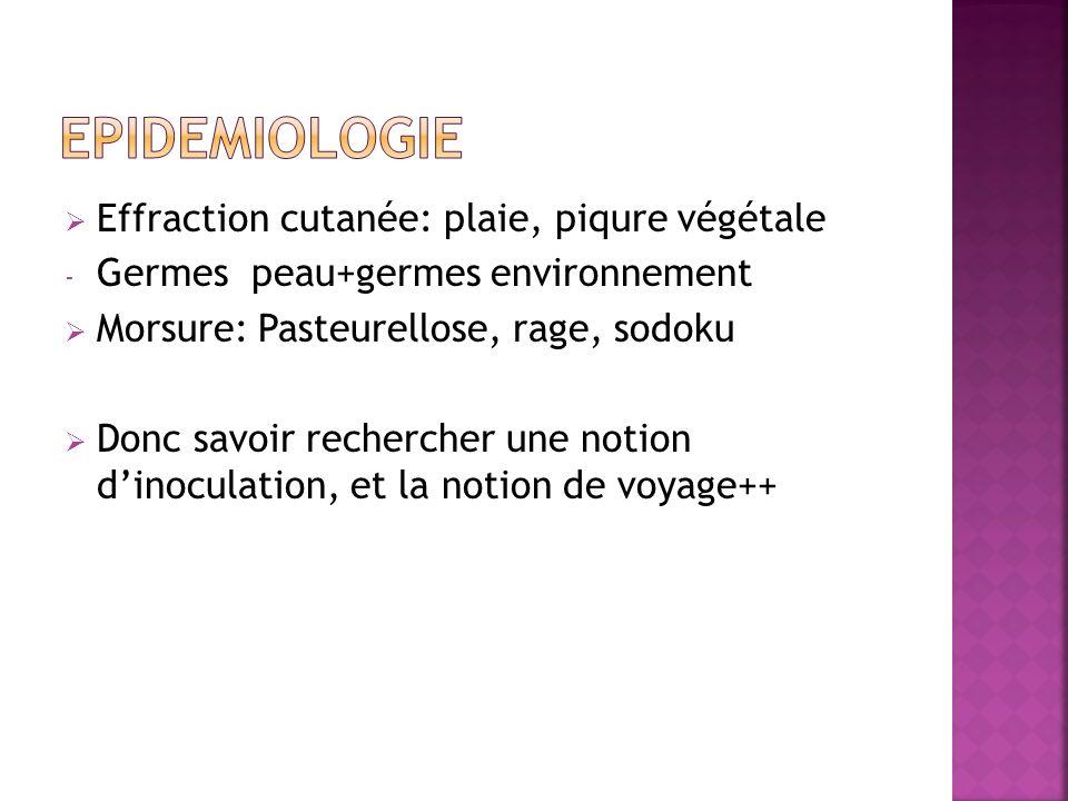 Effraction cutanée: plaie, piqure végétale - Germes peau+germes environnement Morsure: Pasteurellose, rage, sodoku Donc savoir rechercher une notion d