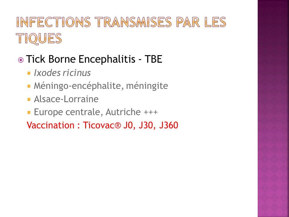 Tick Borne Encephalitis - TBE Ixodes ricinus Méningo-encéphalite, méningite Alsace-Lorraine Europe centrale, Autriche +++ Vaccination : Ticovac® J0, J