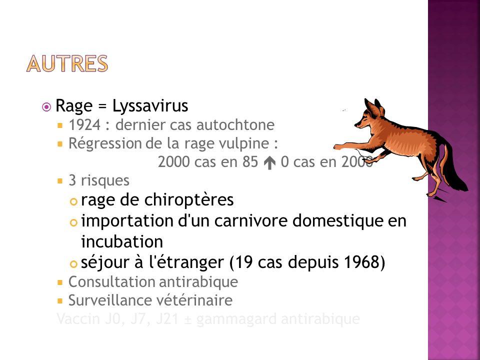 Rage = Lyssavirus 1924 : dernier cas autochtone Régression de la rage vulpine : 2000 cas en 85 0 cas en 2000 3 risques rage de chiroptères importation
