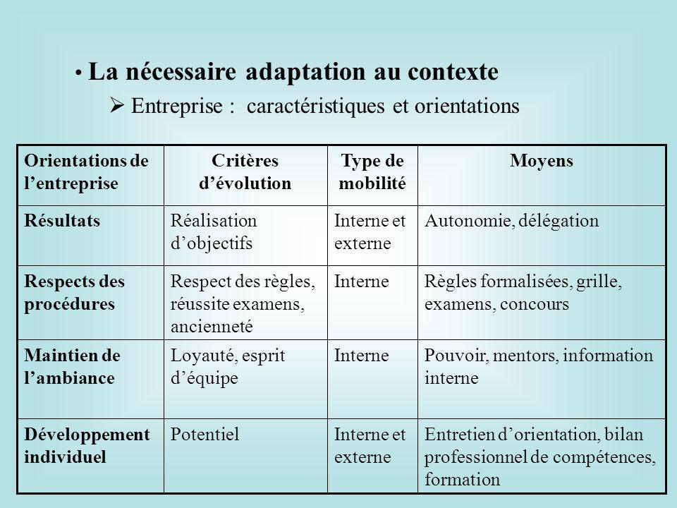 La nécessaire adaptation au contexte Entreprise : caractéristiques et orientations Entretien dorientation, bilan professionnel de compétences, formati