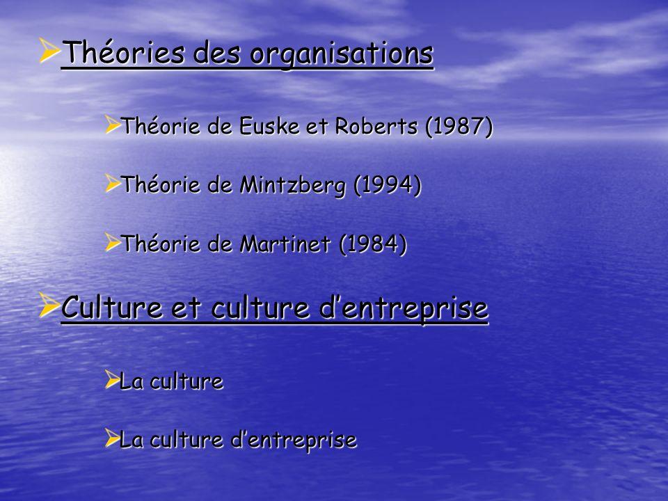 Théories des organisations Théories des organisations Théorie de Euske et Roberts (1987) Théorie de Euske et Roberts (1987) Théorie de Mintzberg (1994