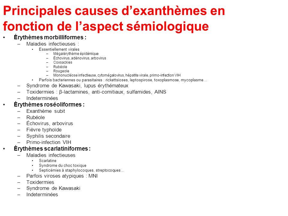 Principales causes dexanthèmes en fonction de laspect sémiologique Érythèmes morbilliformes : –Maladies infectieuses : Essentiellement virales –Mégalé