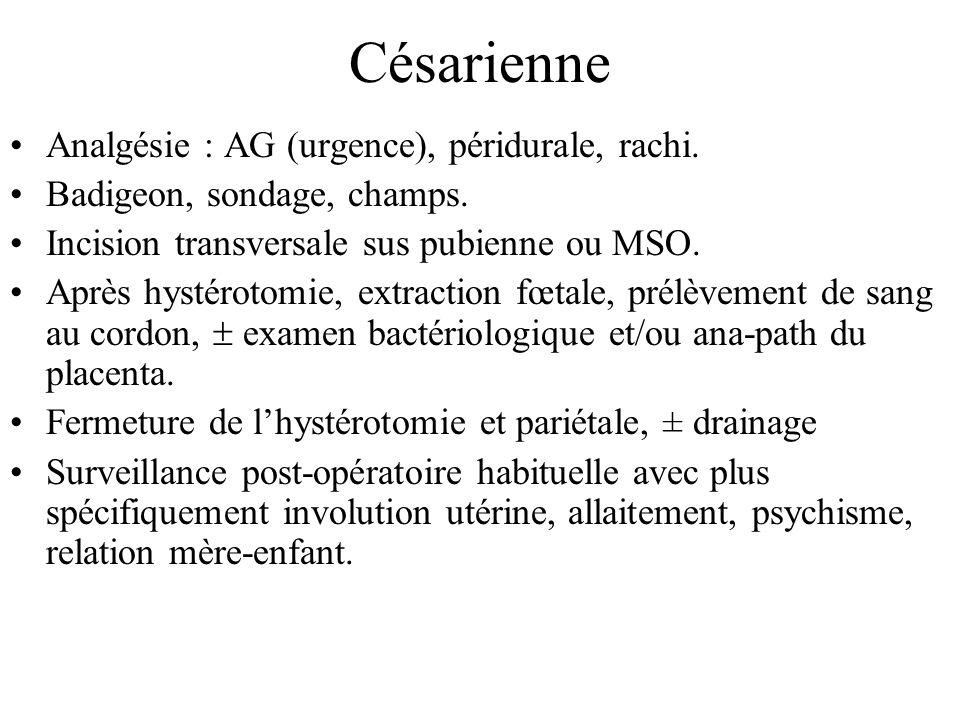Césarienne Analgésie : AG (urgence), péridurale, rachi. Badigeon, sondage, champs. Incision transversale sus pubienne ou MSO. Après hystérotomie, extr