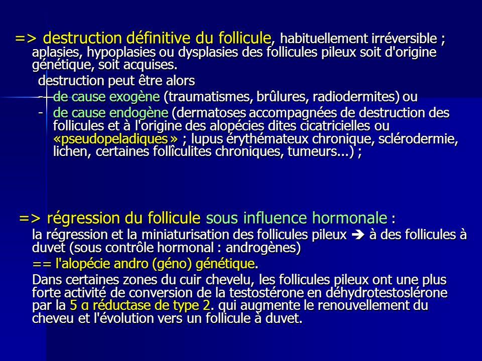 => destruction définitive du follicule, habituellement irréversible ; aplasies, hypoplasies ou dysplasies des follicules pileux soit d'origine génétiq