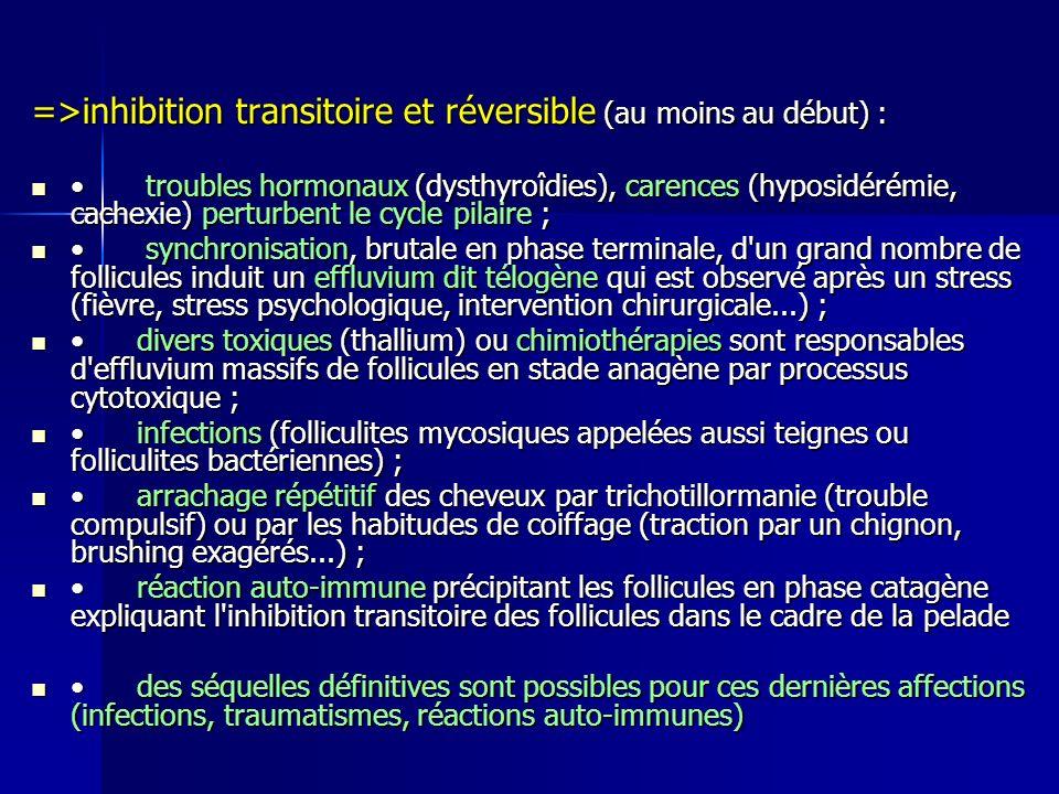 =>inhibition transitoire et réversible (au moins au début) : troubles hormonaux (dysthyroîdies), carences (hyposidérémie, cachexie) perturbent le cycle pilaire ; troubles hormonaux (dysthyroîdies), carences (hyposidérémie, cachexie) perturbent le cycle pilaire ; synchronisation, brutale en phase terminale, d un grand nombre de follicules induit un effluvium dit télogène qui est observé après un stress (fièvre, stress psychologique, intervention chirurgicale...) ; synchronisation, brutale en phase terminale, d un grand nombre de follicules induit un effluvium dit télogène qui est observé après un stress (fièvre, stress psychologique, intervention chirurgicale...) ; divers toxiques (thallium) ou chimiothérapies sont responsables d effluvium massifs de follicules en stade anagène par processus cytotoxique ; divers toxiques (thallium) ou chimiothérapies sont responsables d effluvium massifs de follicules en stade anagène par processus cytotoxique ; infections (folliculites mycosiques appelées aussi teignes ou folliculites bactériennes) ; infections (folliculites mycosiques appelées aussi teignes ou folliculites bactériennes) ; arrachage répétitif des cheveux par trichotillormanie (trouble compulsif) ou par les habitudes de coiffage (traction par un chignon, brushing exagérés...) ; arrachage répétitif des cheveux par trichotillormanie (trouble compulsif) ou par les habitudes de coiffage (traction par un chignon, brushing exagérés...) ; réaction auto-immune précipitant les follicules en phase catagène expliquant l inhibition transitoire des follicules dans le cadre de la pelade réaction auto-immune précipitant les follicules en phase catagène expliquant l inhibition transitoire des follicules dans le cadre de la pelade des séquelles définitives sont possibles pour ces dernières affections (infections, traumatismes, réactions auto-immunes) des séquelles définitives sont possibles pour ces dernières affections (infections, traumatismes, réactions auto-immunes)