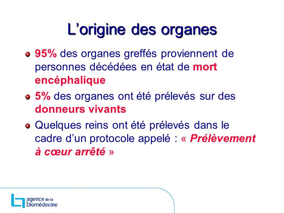 Lorigine des organes 95% des organes greffés proviennent de personnes décédées en état de mort encéphalique 5% des organes ont été prélevés sur des do