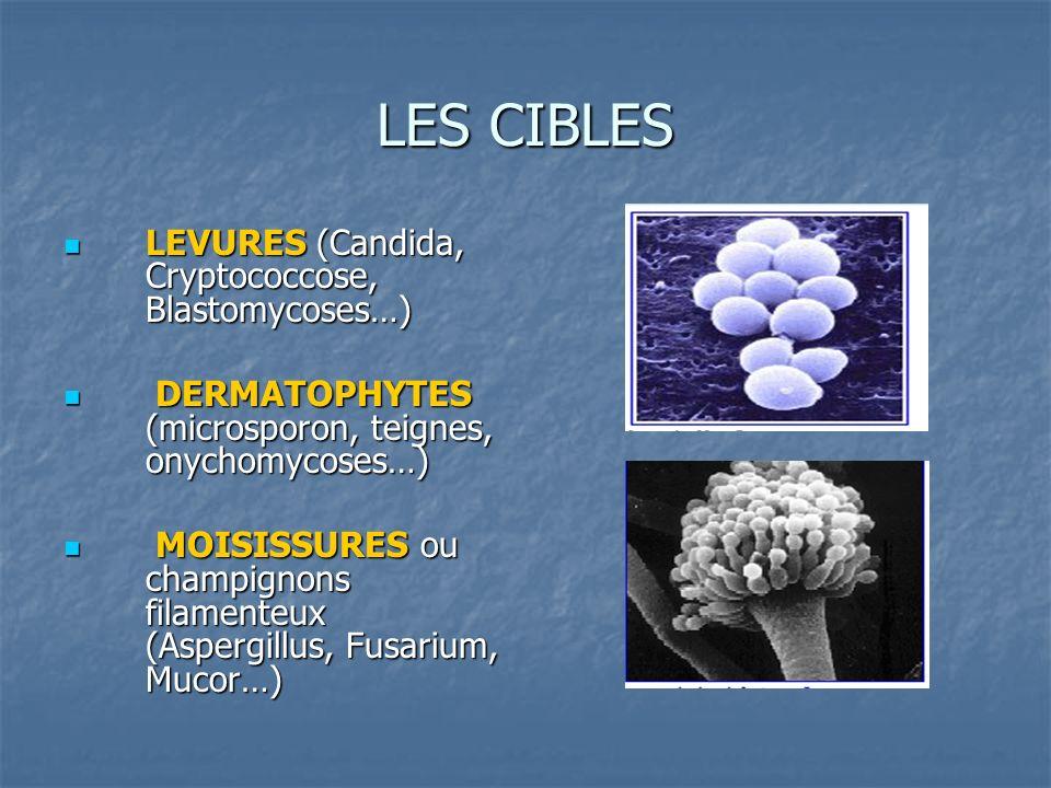 LES CLASSES DANTIFONGIQUES Action sur lergostérol ou sa synthèse Action sur lergostérol ou sa synthèse POLYENES POLYENES Amphotéricine B Amphotéricine B IMIDAZOLES IMIDAZOLES Fluconazole, Itraconazole, voriconazole, posaconazole Fluconazole, Itraconazole, voriconazole, posaconazole FLUCYTOSINE FLUCYTOSINE Autres Autres Griseofulvine, terbinafine (lamisil) Griseofulvine, terbinafine (lamisil) Action sur la paroi Action sur la paroi ECHINOCANDINES ECHINOCANDINES Caspofongine Caspofongine