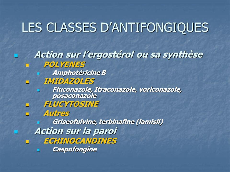 LES CLASSES DANTIFONGIQUES Action sur lergostérol ou sa synthèse Action sur lergostérol ou sa synthèse POLYENES POLYENES Amphotéricine B Amphotéricine