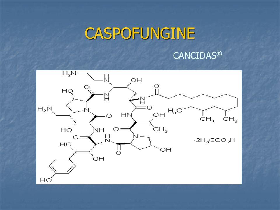 CASPOFUNGINE CANCIDAS ®