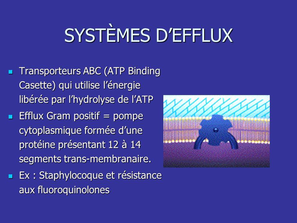 SYSTÈMES DEFFLUX Transporteurs ABC (ATP Binding Casette) qui utilise lénergie libérée par lhydrolyse de lATP Transporteurs ABC (ATP Binding Casette) q
