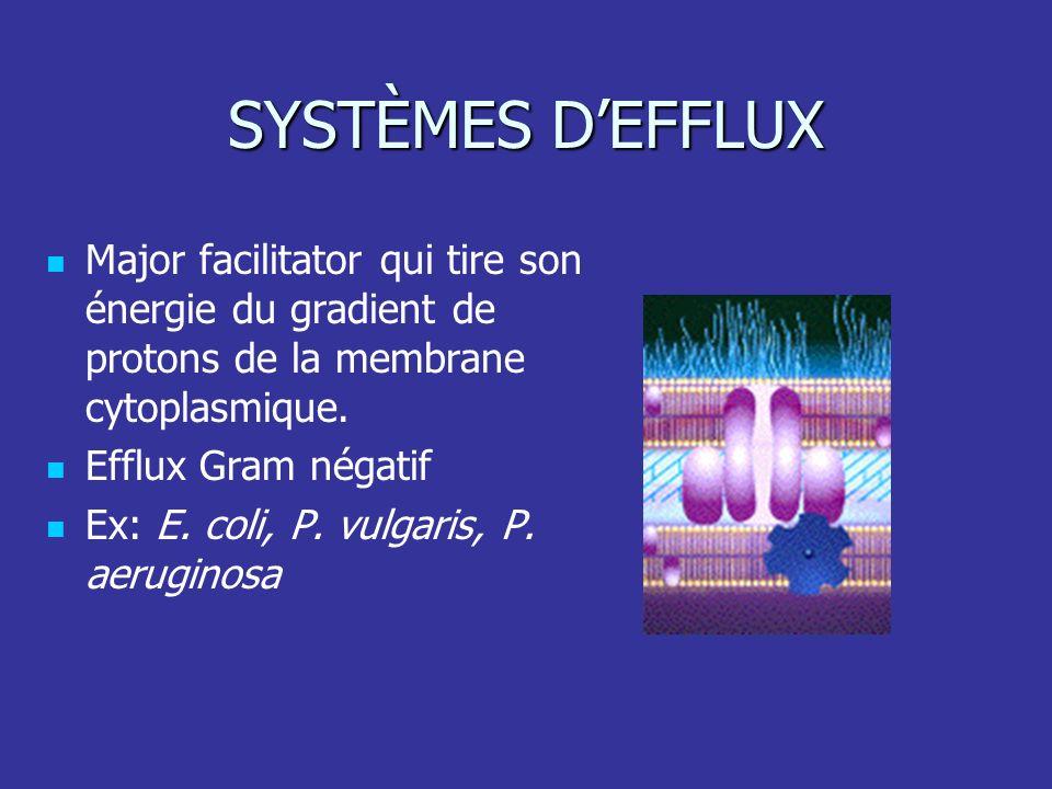 SYSTÈMES DEFFLUX Major facilitator qui tire son énergie du gradient de protons de la membrane cytoplasmique. Efflux Gram négatif Ex: E. coli, P. vulga