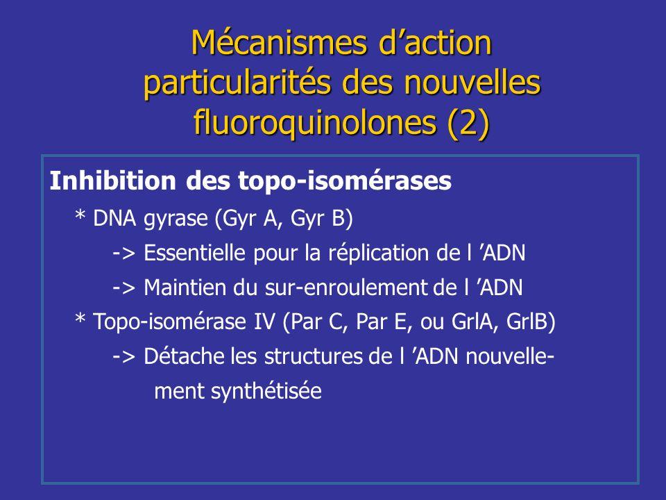 Inhibition des topo-isomérases * DNA gyrase (Gyr A, Gyr B) -> Essentielle pour la réplication de l ADN -> Maintien du sur-enroulement de l ADN * Topo-
