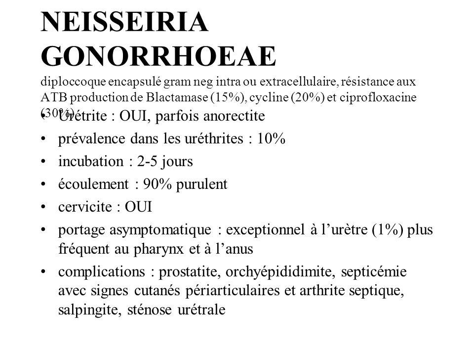 NEISSEIRIA GONORRHOEAE diploccoque encapsulé gram neg intra ou extracellulaire, résistance aux ATB production de Blactamase (15%), cycline (20%) et ci
