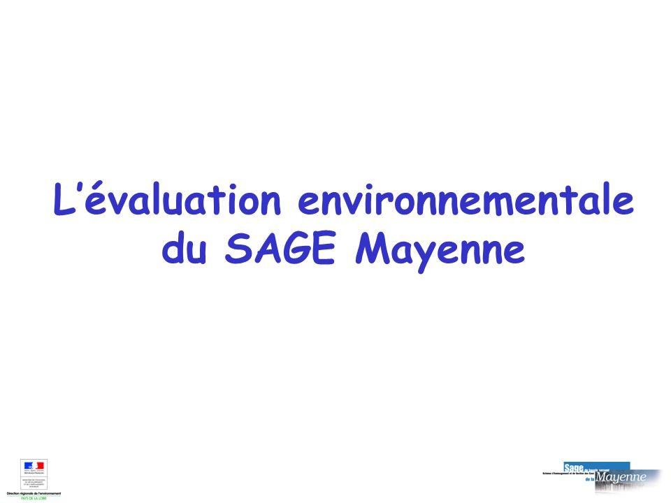 Situation du SAGE Mayenne Validation du projet de SAGE par la CLE : le 7 avril 2006 Approbation du SAGE le 28 juin 2007 (soit après le 21 juillet 2006) Circulaire du 12 avril 2006 + information des présidents de CLE fin avril Élaboration dun rapport environnemental postérieure à la rédaction du SAGE