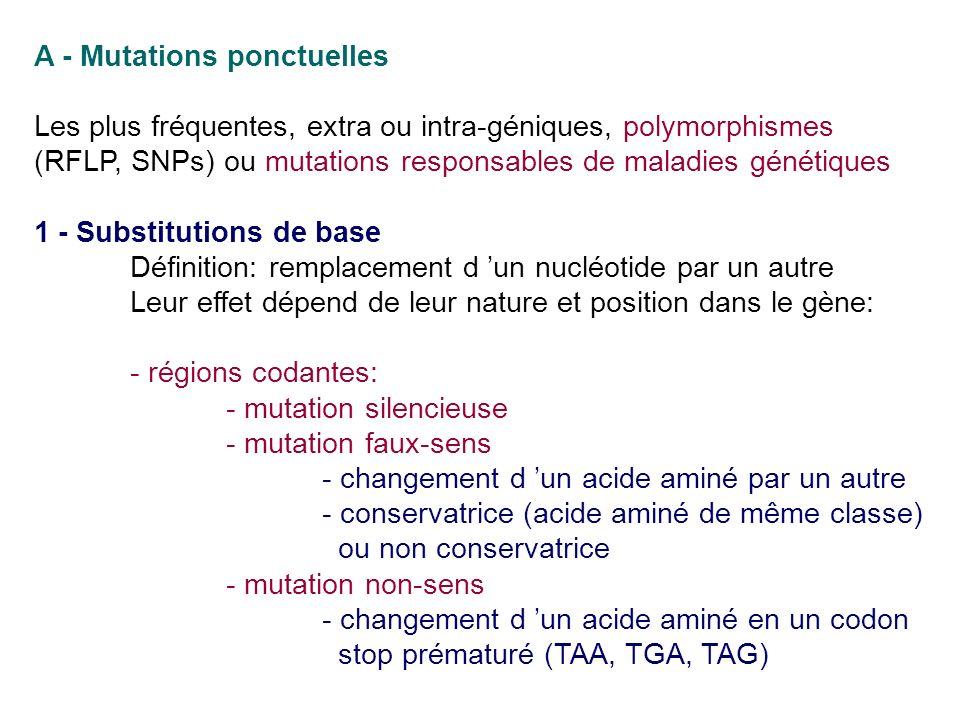 A - Mutations ponctuelles Les plus fréquentes, extra ou intra-géniques, polymorphismes (RFLP, SNPs) ou mutations responsables de maladies génétiques 1